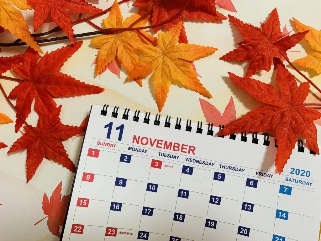 11月のレッスン予定